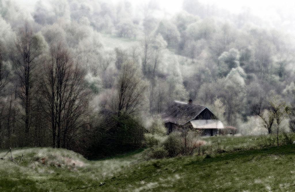 Targosz-cisza-26.jpg